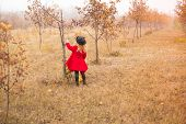 Girl In Red Coat Collects Fallen Leaves From Trees In Autumn Garden poster