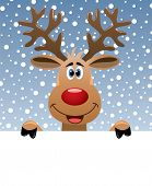 foto of rudolph  - vector christmas illustration of rudolph deer holding blank paper for your text - JPG