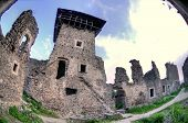 picture of zakarpattia  - Nevitsky Castle ruins Zakarpattia Oblast Ukraine Built in 13th century - JPG