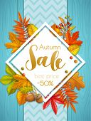 Seasonal Autumn Sale Banner Or Poster With Fall Foliage Maple, Oak, Elm, Chestnut, Leaves Japanese M poster