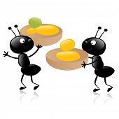 two little hardworking ants carrying their food vector illustration isolated on white