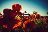 Opium, Woman With Long Curly Hair In Red Dress And Black Boots Hold Flower Bouquet In Field Of Poppy poster