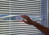 The Womans Hand Raises The Rail Of The Horizontal Blinds To Look Out The Window. poster