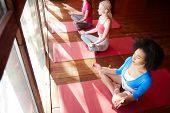 From above shot of diverse women sitting in row on pink yoga mats against window and meditating in p poster