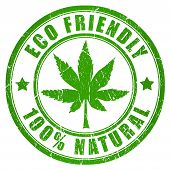 foto of cannabis  - Cannabis eco friendly stamp isolated on white background - JPG