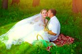 couple at wedding newlyweds picnic in a forest glade, bride gr