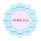picture of swine flu  - Swine Flu concept circular diagram in pink and blue with great terms such as fever virus H1N1 outbreak and more - JPG