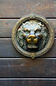 Copper Lion Sculpture On The Door