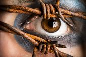 foto of extreme close-up  - Eye and tears with rusty barbed wire - JPG