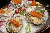 image of oyster shell  - Beautifully plated raw oysters on the half shell over ice - JPG