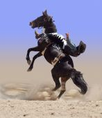 image of bronco  - Bucking Rodeo Horse with Rider isolated with clipping path - JPG