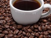 foto of vivacious  - A cup of coffe to get energy and become vivacious - JPG