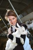 pic of baby goat  - Cheerful farmer woman carrying baby goat in barn - JPG