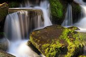 foto of smoky mountain  - Water falls over a jumble of moss - JPG