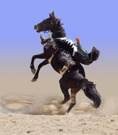 stock photo of bucking bronco  - Bucking Rodeo Horse with Rider isolated with clipping path - JPG