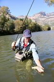 image of fly rod  - Closeup of fly fisherman releasing trout in river - JPG
