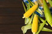 image of corn-silk  - Overhead shot of raw sweet corn cobs photographed on dark wood with natural light - JPG