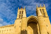 stock photo of nostradamus  - Montpellier Cathedral of Saint Pierre  - JPG