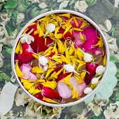 stock photo of jasmine  - Water with jasmine and roses corolla in bowl  - JPG