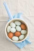 stock photo of saucepan  - Fresh light green eggs from Easter egger chicken and brown eggs in a saucepan - JPG