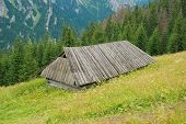 picture of shepherds  - shepherds hut on the side of a mountain in the Tatry Mountains - JPG
