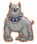 picture of bulldog  - Vector illustration of stylized gray angry bulldog - JPG