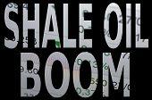 stock photo of shale  - Inscription  - JPG