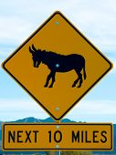 stock photo of jack-ass  - Signs for wild burros Arizona - JPG
