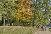 Autumn Walk Friends Park Path. Three Friends Are Walking Down The Park Avenue. Trees And Colorful Le poster