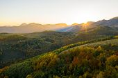 Aerial View Of Autumn Forest In Sunset Lights poster