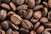 Coffee Beans. Coffee Beans As Background Or Texture. Background Of Coffee Beans. poster