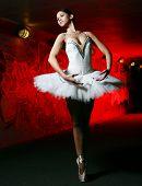 Постер, плакат: Красивая балерина балет танцы танцы
