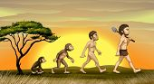 pic of ape-man  - illustration of picture showing evolution of man - JPG