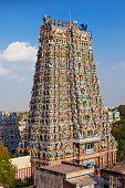 picture of meenakshi  - Menakshi Temple Madurai - JPG