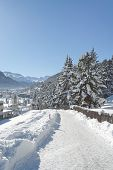 stock photo of engadine  - Winter landscape in St - JPG