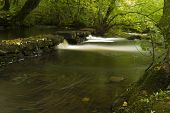 picture of anglesey  - Long exposure of small waterfalls The Dingle  - JPG