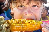 picture of sweet-corn  - Happy boy eating corn on the cob - JPG