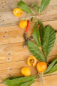 image of loquat  - Still life with some freshly picked loquats - JPG