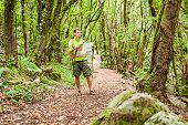 image of canary-islands  - Man hiker hiking in green forest - JPG