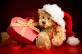foto of mating bears  - A brown teddy bear wearing a Christmas hat sitting and hugging a heart shaped box with a bow ribbon isolated against a red and black background - JPG