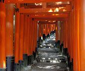 stock photo of inari  - Fushimi Inari Taisha Shrine in Kyoto Japan - JPG