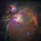 stock photo of nebula  - An unprecedented look at the Orion Nebula - JPG