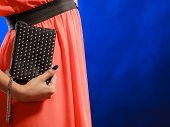 image of clutch  - Fashion elegant evening outfit - JPG