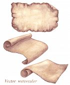 pic of scroll  - Set of watercolor old parchment scrolls isolated on white - JPG