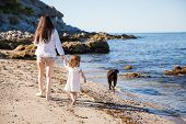 picture of babysitter  - Back view of a young mother and her little girl walking down a beach with their dog - JPG
