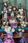 image of flower shop  - shelves with basket of flowers in a flower shop - JPG