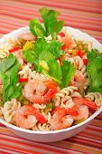 foto of celery  - Italian salad made of fusilli shrimp celery decorated with celery leaves