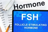 picture of hormone  - Papers with hormones list and tablet  with words  follicle - JPG