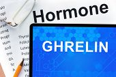 stock photo of hormones  - Papers with hormones list and tablet  with word ghrelin - JPG