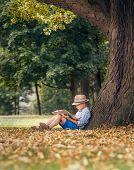 stock photo of linden-tree  - Boy readind under the big linden tree - JPG